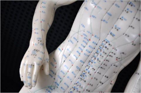 akupunktur_koerper